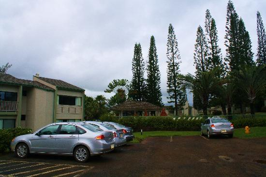 Makai Club: Front of our building and pool area