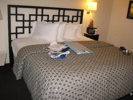 Motel Safari: bed/room