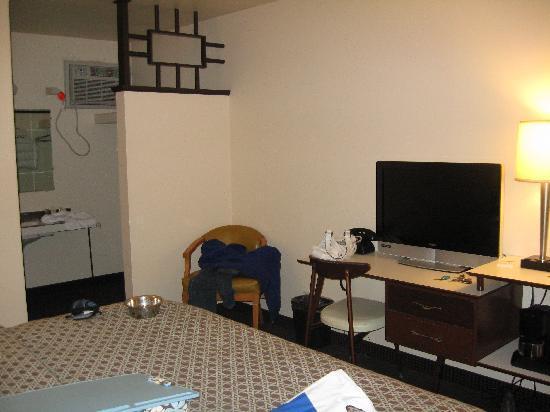 Motel Safari: room