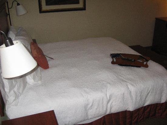 Hampton Inn Rock Springs: bed