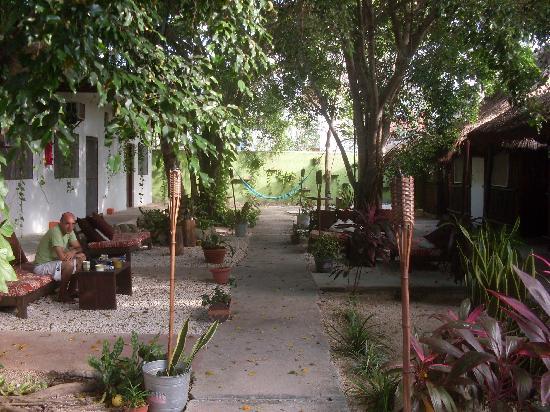 Secret Garden Hotel: El jardín del hotel-1