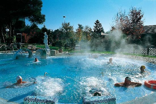 Petrarca Hotel Terme: piscina esterna