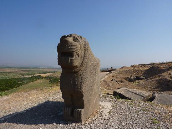 Ain Dara, ซีเรีย: Il leone fiero