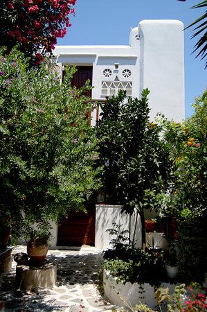 Villa Pinelopi Apartments & Rooms : Villa Pinelopi's garden