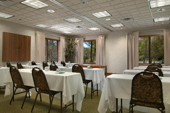 Wingate by Wyndham Frisco: Large meeting rooms