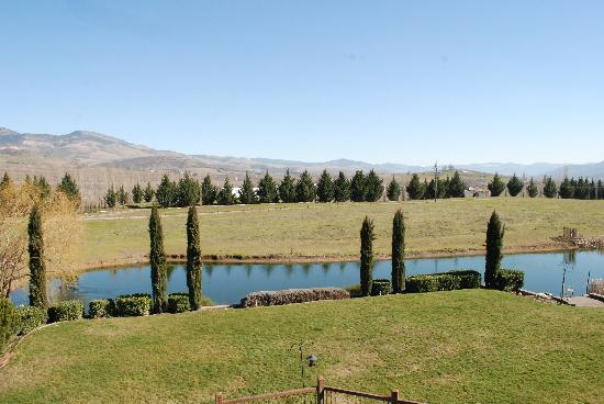 Paschal Winery: view