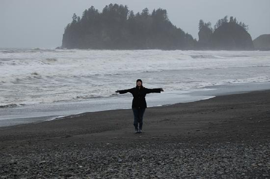 first beach la push   picture of twilight tours by team