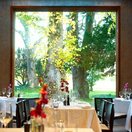 Carton House Hotel & Golf Club: Linden Tree Restaurant