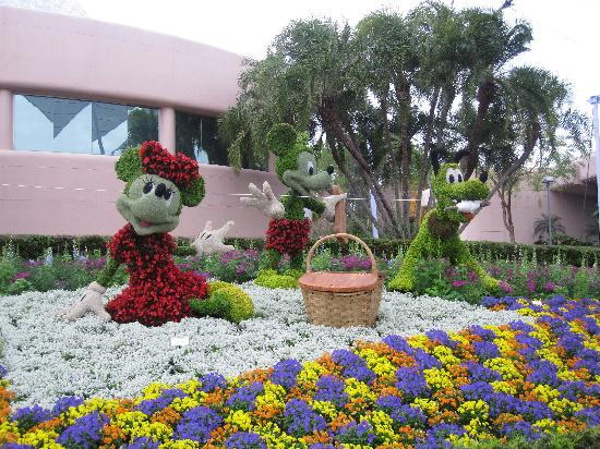 Тематический парк Epcot: Epcot flower and garden festival 2011