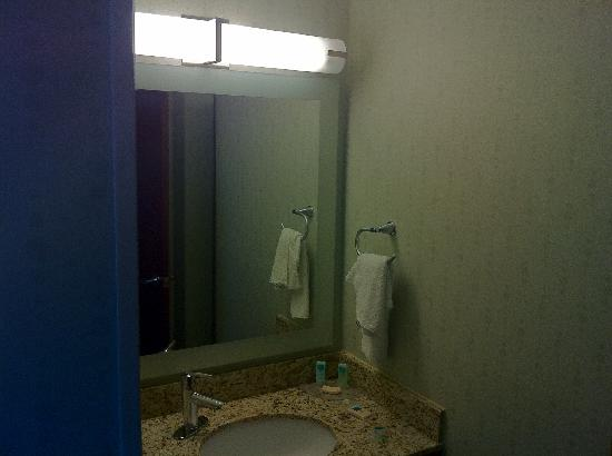 SpringHill Suites Herndon Reston: Bathroom area
