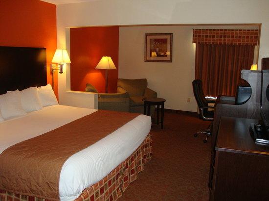 Days Inn & Suites Ridgeland: Business Suties
