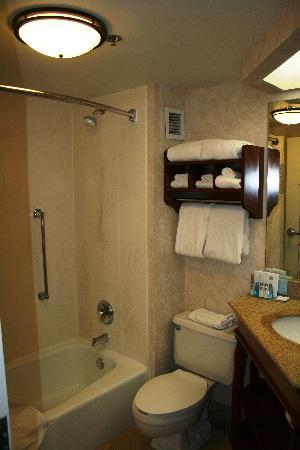 Hampton Inn West Springfield: HAMPTON INN WEST - il bagno