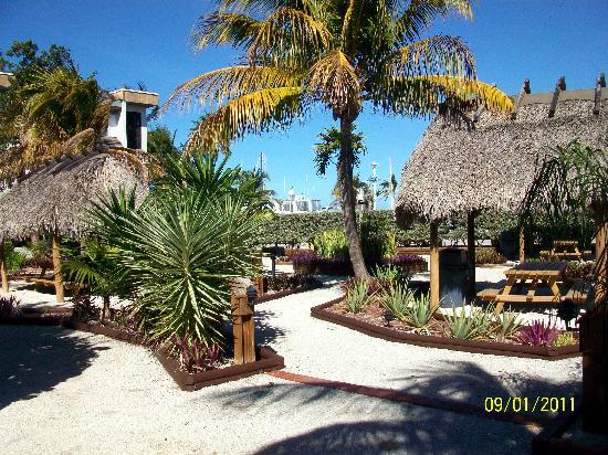 Marathon Key Beach Club: BBQ area