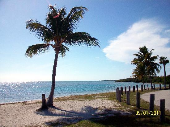 Marathon Key Beach Club : Veterans Memorial Park and beach