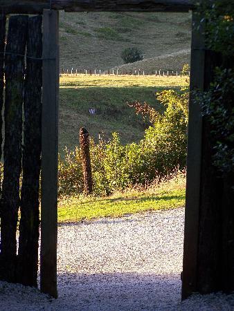 Te Tiro: Entrance doorway