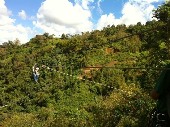 Toro Verde Nature Adventure Park: 1 of 8 ziplines