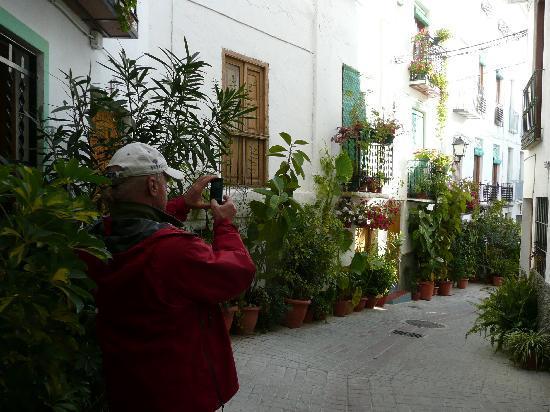 Alcadima Hotel: rue etroite bien decorer