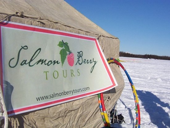 Salmon Berry Tours - Day Tours : Salmon Berry's tent with hula hoops - See Mt McKinley just to the right of the tent (tiny, but i