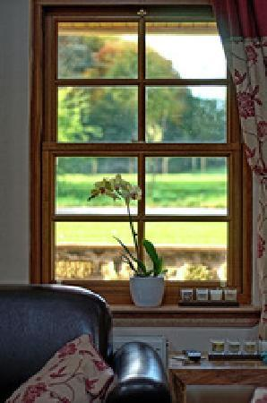 Williamscraig Holiday Cottages: View outside the house