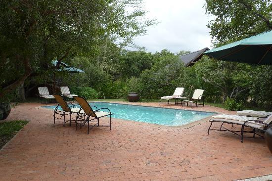 Monwana Game Lodge: pool