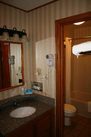 BEST WESTERN Adirondack Inn: BW ADIRONDACK INN - il bagno