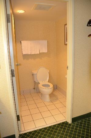 Fairfield Inn & Suites Jackson Airport: Bathroom (Toilet)