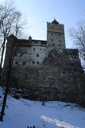 Contele Vladimir : The Castle