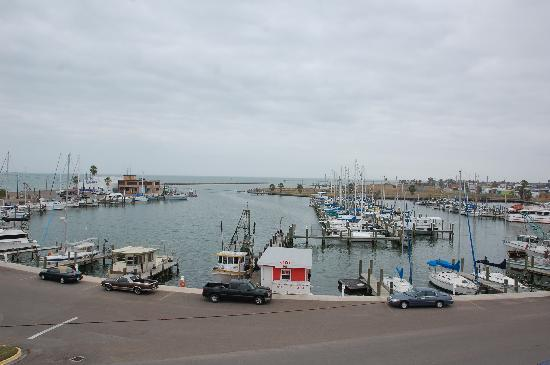 Rockport, TX: view of harbor from top