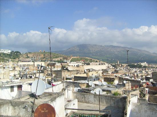 Dar Hafsa : A view from the terrace - towards the Merinid tombs
