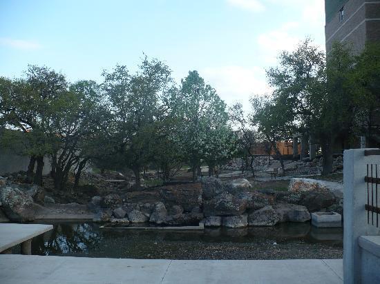 Drury Plaza Hotel San Antonio North Stone Oak: more outside area