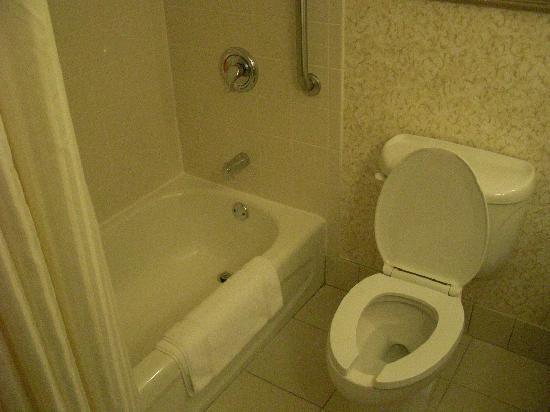 มิรามาร์, ฟลอริด้า: bathroom