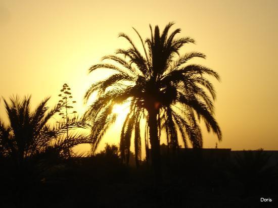 Djerba Sun Club: Tramonti splendidi