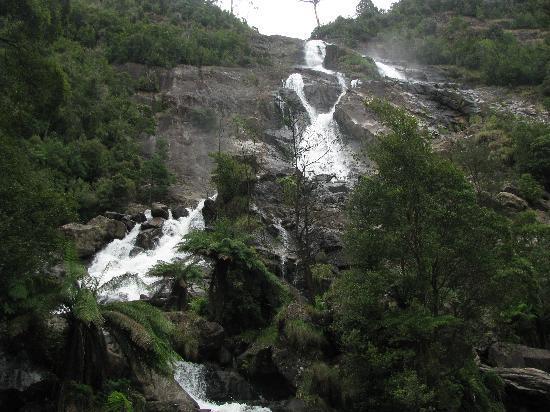 Tasmania, Australia: St. Columba Falls