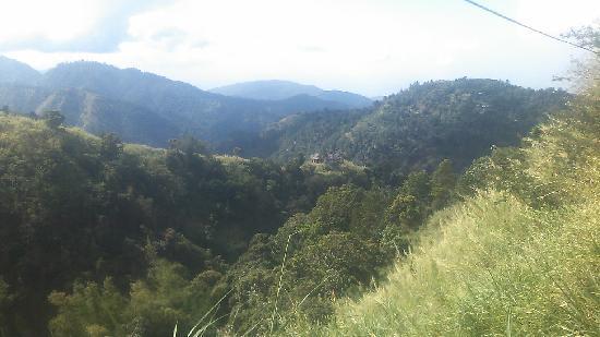 Blue Mountain Peak: 風景2