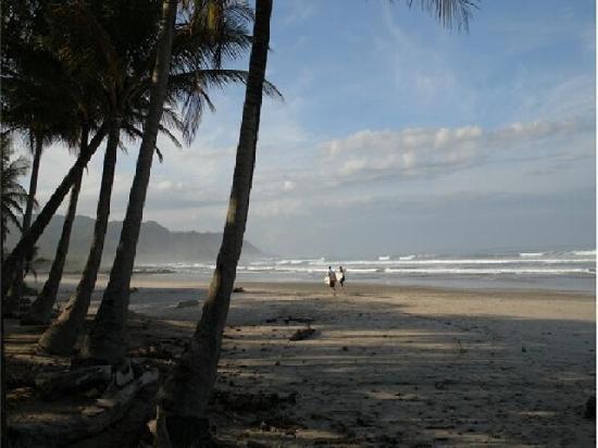 Manta Raya Hotel: beach access