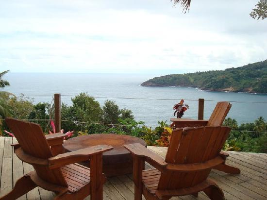 Pagua Bay House Oceanfront Cabanas : beautiful views from restaurant