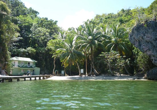 Flora Tours - Excursions - Las terrenas