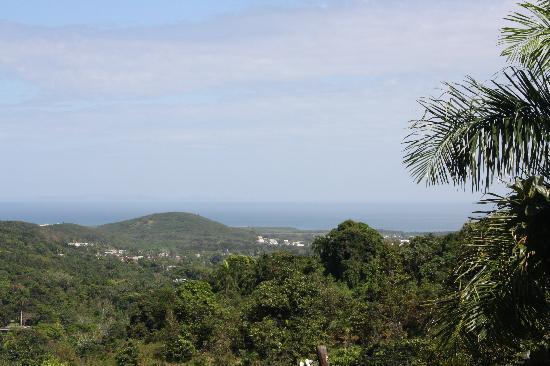 Ceiba Country Inn: View looking east