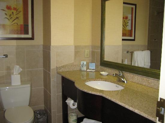 Hampton Inn Reading/Wyomissing: Bath