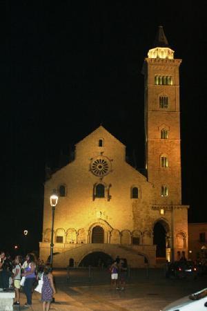 la Cattedrale di Trani notturna