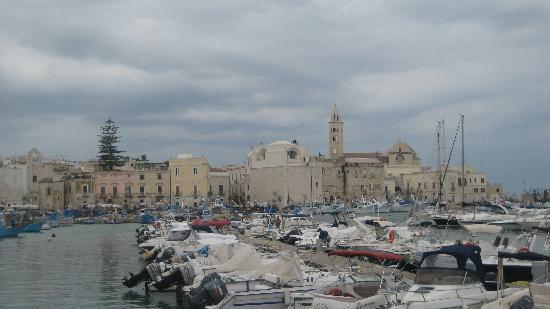 Trani, إيطاليا: la Cattedrale di Trani vista dal porto