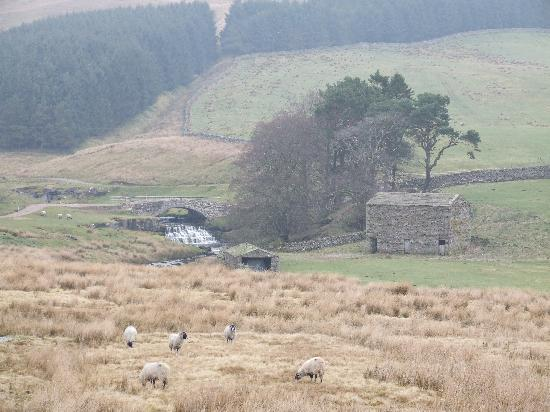 The Garsdale: Just nearby