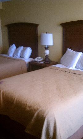 Rosen Inn International : beds were clean