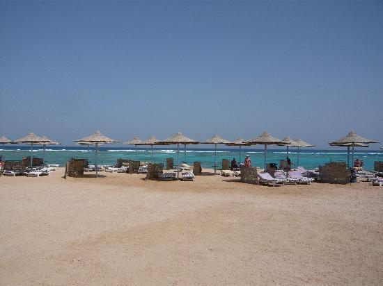 Fantazia Resort: MARSA ALAM 2011