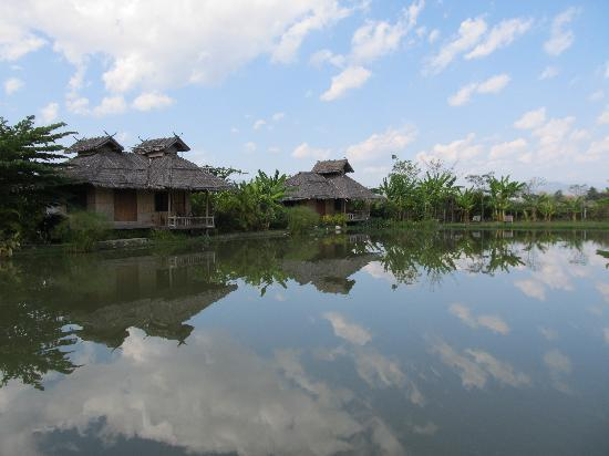 Bueng Pai Farm: Our fabulous bungalows