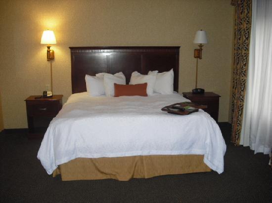 Hampton Inn & Suites Toledo-Perrysburg: King Bed