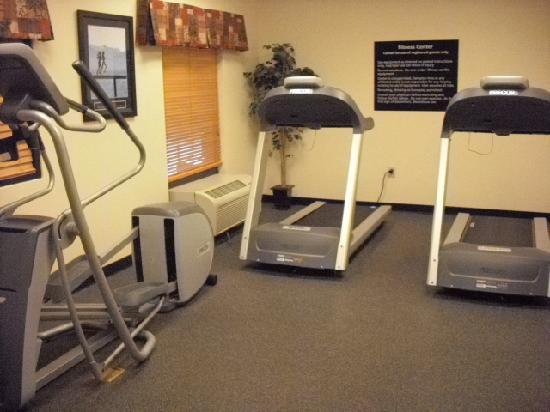 Hampton Inn & Suites Toledo-Perrysburg: Work out room