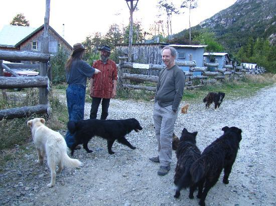 Puerto Ingeniero Ibanez, Chili : Greeting committee at Campo Alacaluf