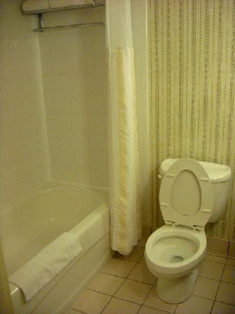Hilton Garden Inn Cincinnati/Sharonville: Bathroom