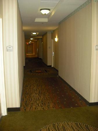 Hilton Garden Inn Cincinnati/Sharonville: 1st floor hallway